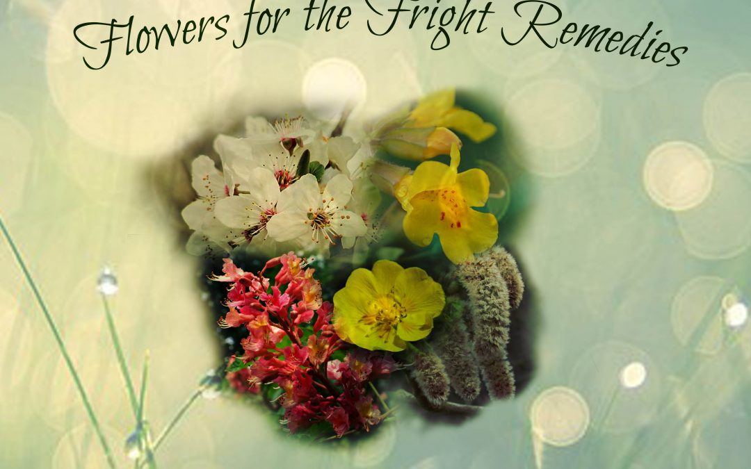 Remedies for Fright