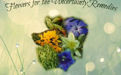 Remedies for Uncertainty