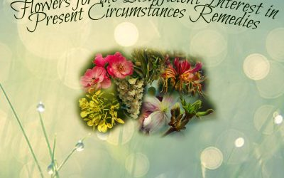 Remedies for Insufficient Interest in Present Circumstances