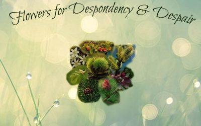 Remedies for Despondency and Despair