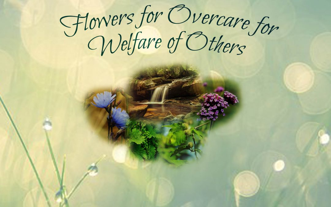 Remedies for Overcare for Welfare of Others