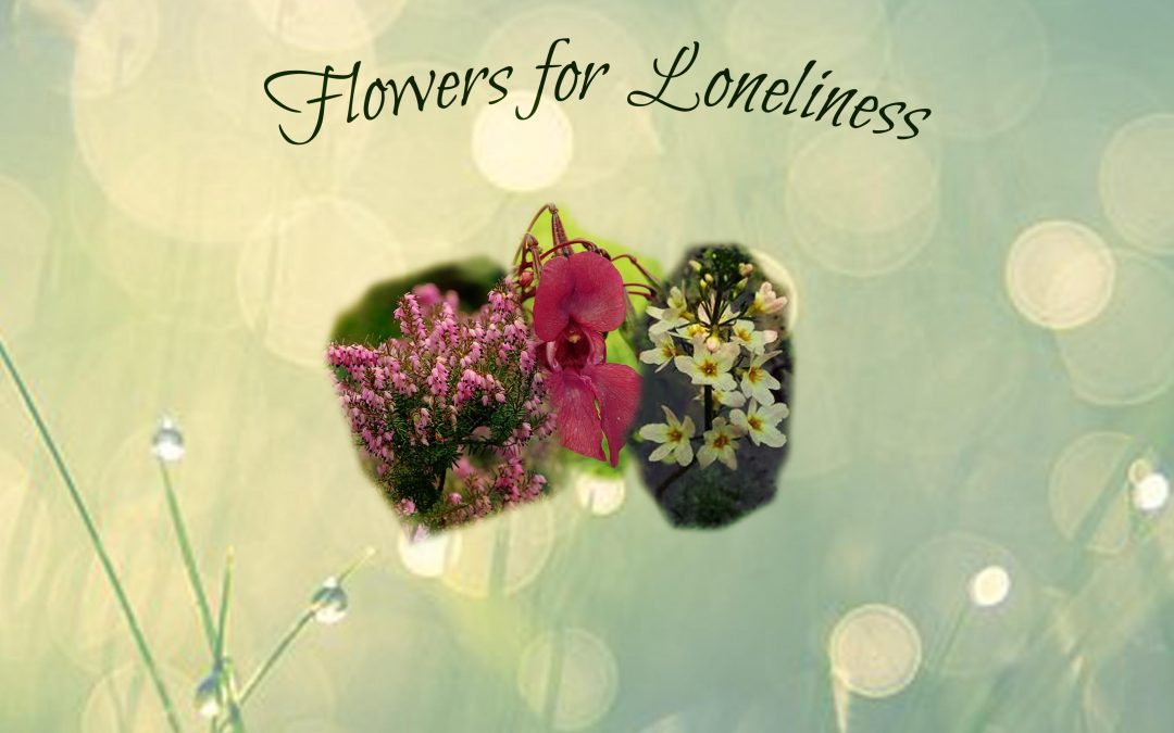 Remedies for Loneliness